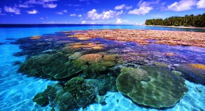 tempat mancing ikan kakap merah