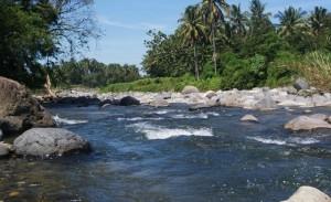 bagaimana cara memancing ikan di sungai