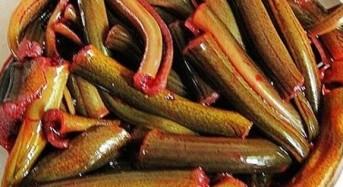 Rahasia umpan jitu mancing ikan kelabau terbaru