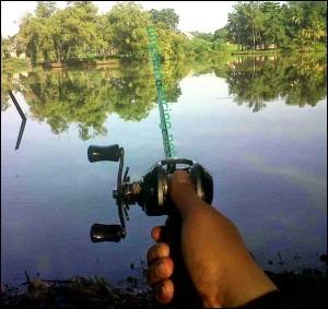 cara mancing ikan patin yang benar