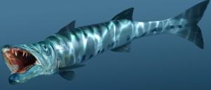 cara mancing ikan alu alu