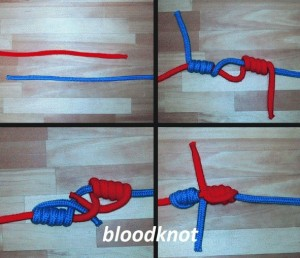 teknik blood knot