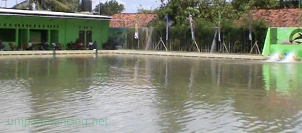 kolam saung desa pabayuran