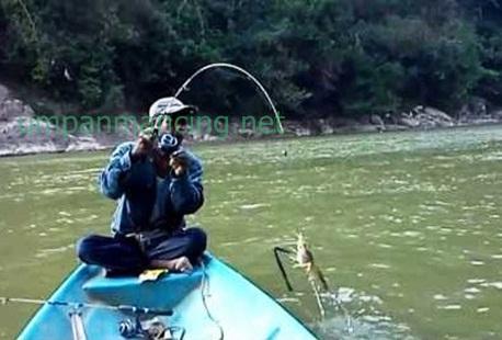 teknik memancing udang galah